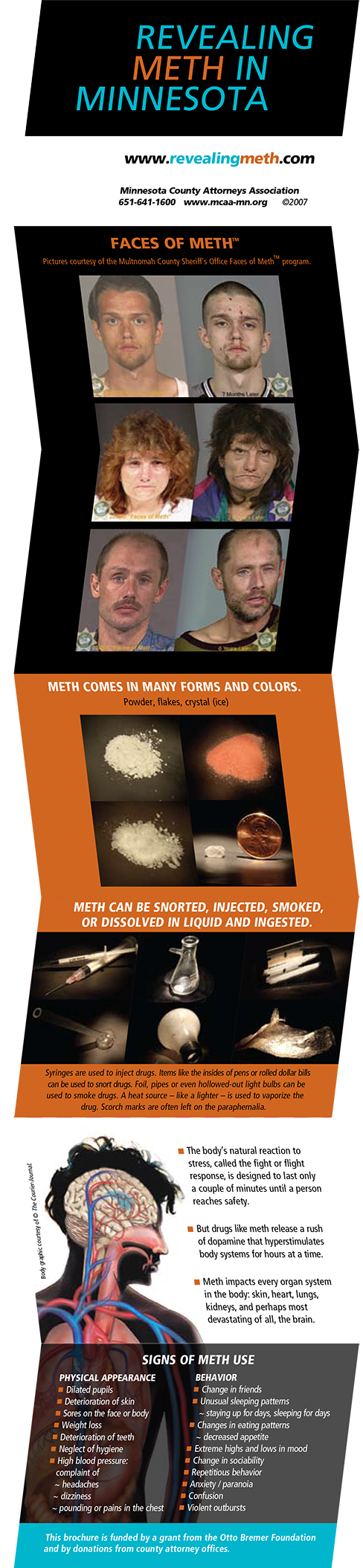Case Study Image: Minnesota County Attorneys Association Revealing Meth brochure